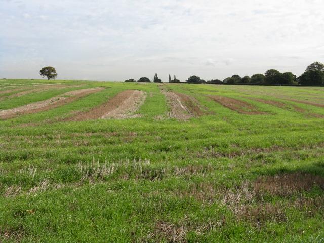 Fields Of Hulme Barns Farm