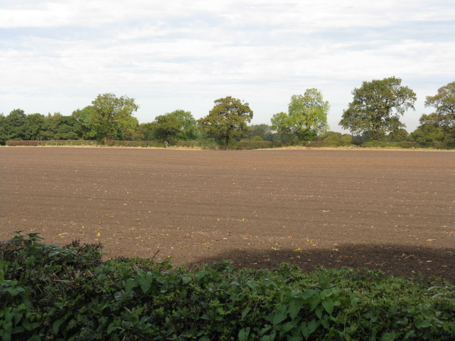 Riddled Field At Winterbottom