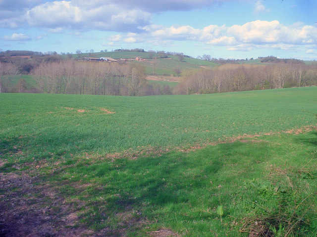 Arable land on the Great Marston Estate