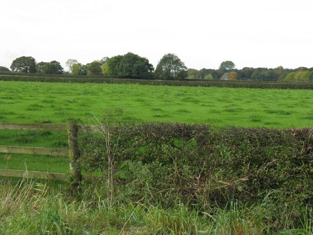 Fields Off Rowleybank Lane