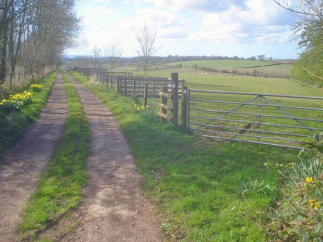 Track to Sheepcote
