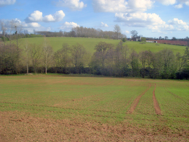 Arable land near Holly Brook