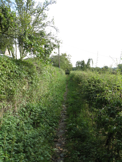 Bridleway Alongside The Ashes