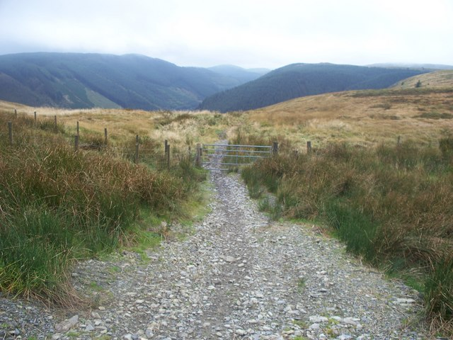 Bridleway leading towards Banc Rhiw'r-ordd