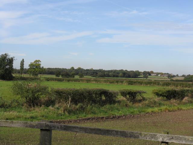 Panorama Near Arleyview Farm