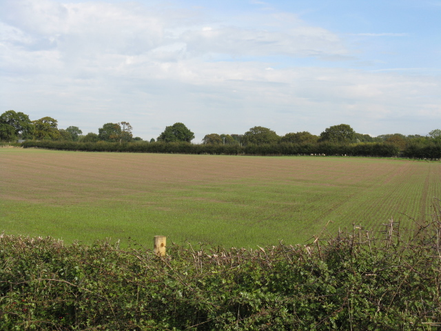 Fields Of Moss Hall Farm