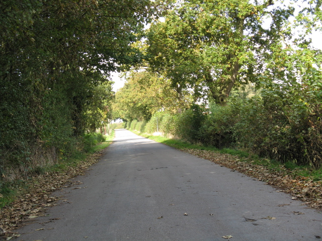 Lane To Swineyard Hall