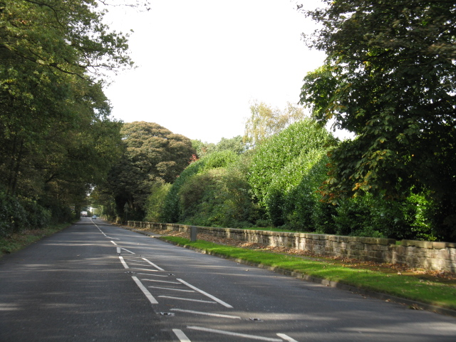 A50, Looking Toward High Legh