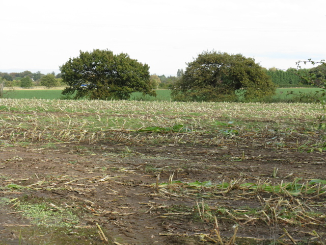 Stubble Field Off Mowpen Brow