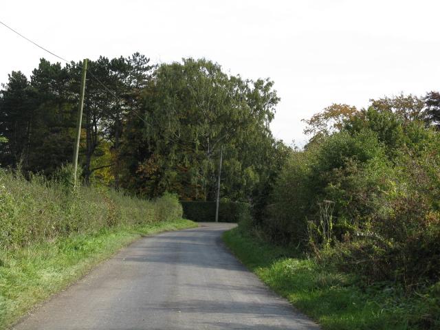 Wrenshot Lane At The Bend