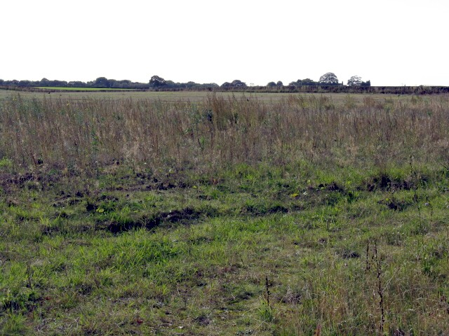 More Fields Off Bucklowhill Lane