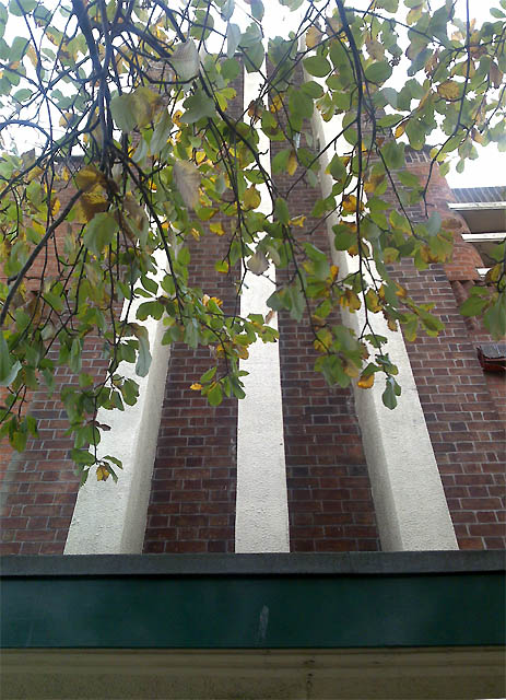 Lime Tree and Futurist Detail