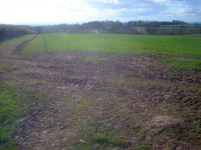 Arable land east of Lower Buckland