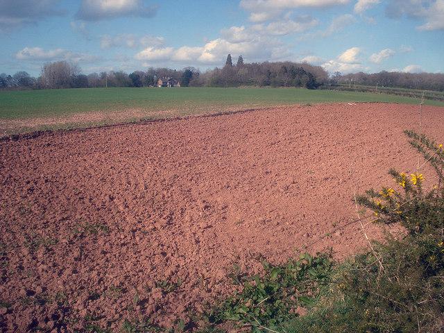 Farmland south of Docklow Manor