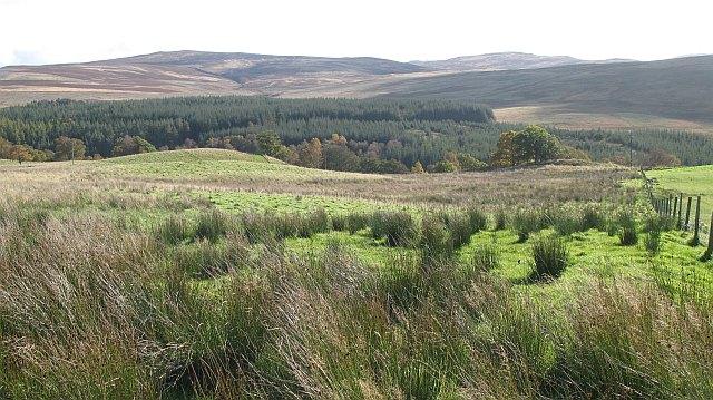 A wet field, Drumour
