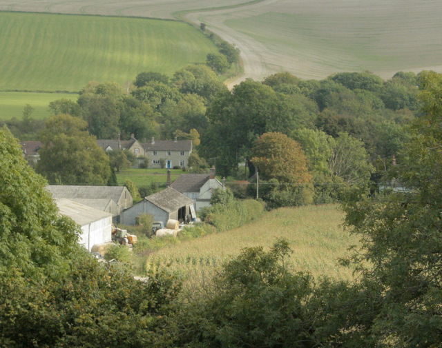 2009 : Woodcombe Farm and Brixton Deverill