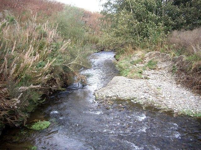 Downstream Ness Bogie