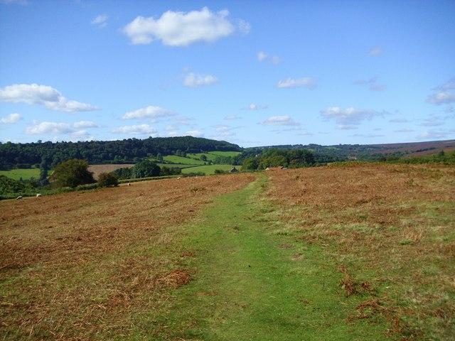 Path across the moor
