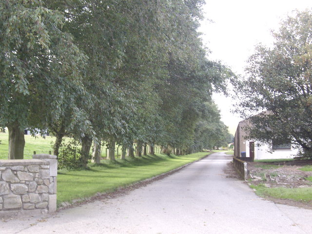 Avenue access to Dunscroft