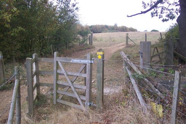 Kissing Gate on Barton Down