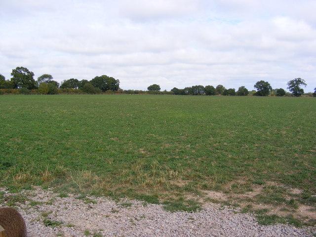 Field off Reepham Road