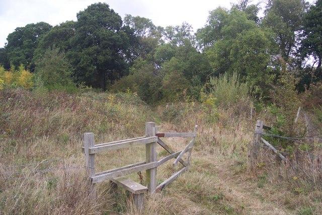 Stile and Gate near Brickhouse Wood
