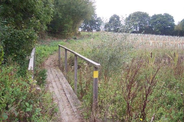 Footbridge near Brickhouse Wood (2)