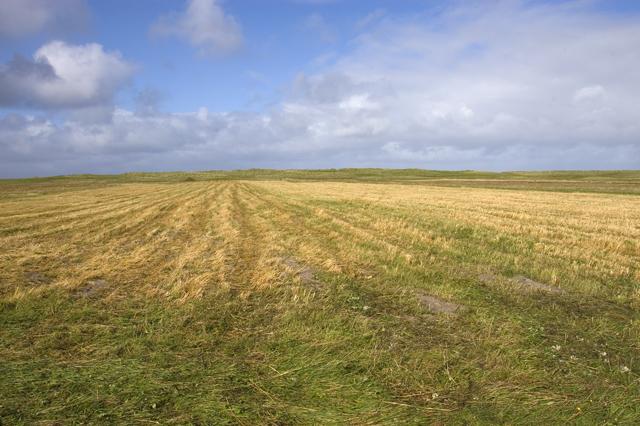 Stubble field on the machair