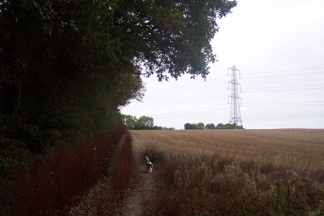 Footpath beside Paddock Wood