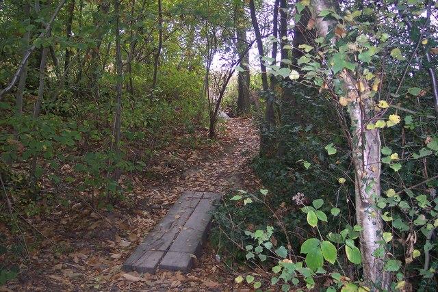 Footbridges in Paddock Wood