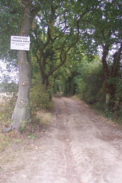 Bridleway to Langton Lodge