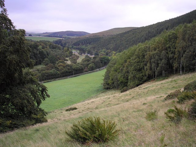 The Tweed Valley from between the Neidpath and Calfshaw Plantations