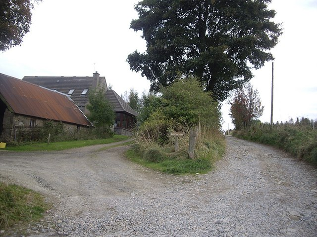 Loanend and track to Drumbulg
