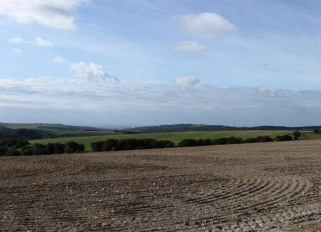 Plumpton Plain