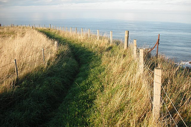 Coastal path, Pease Bay