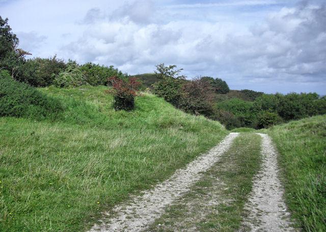 Track towards Creech Barrow