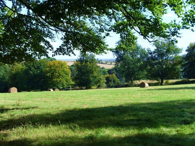 Quiet pastures near Kirkbymoorside