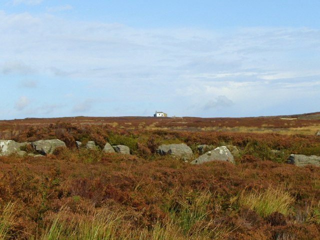 Across Carle Moor to the shooting hut