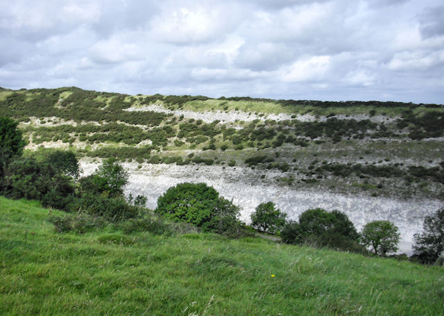 Chalk Quarry, Stonehill Down