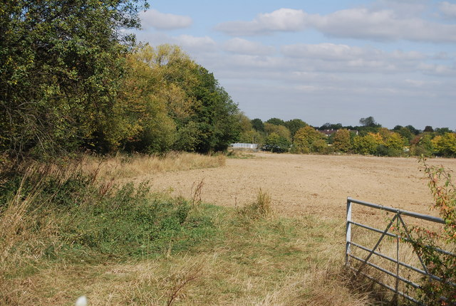 Field south of Lower Haysden Lane