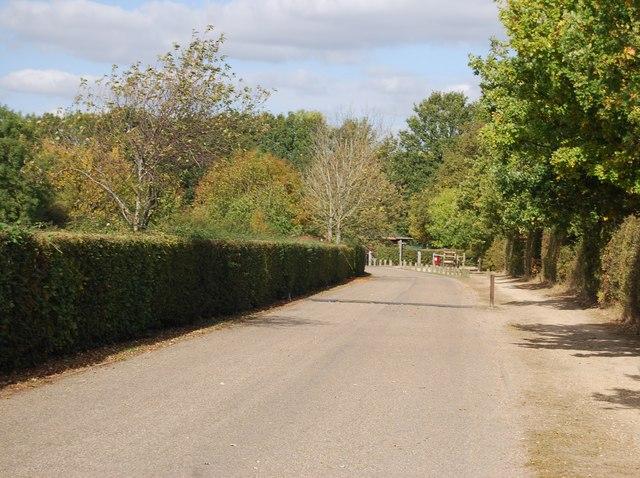 Entrance Drive, Haysden Country Park