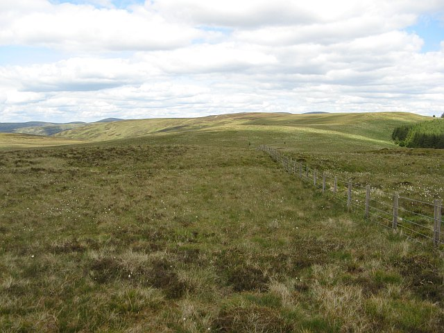 March fence, Hare Cleuch Head