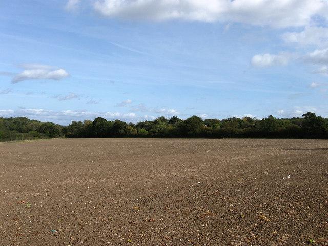 Rockett Field