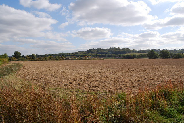 Field south of Lower Haysden Lane