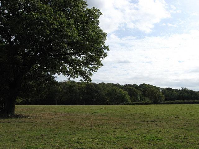Redgate Field