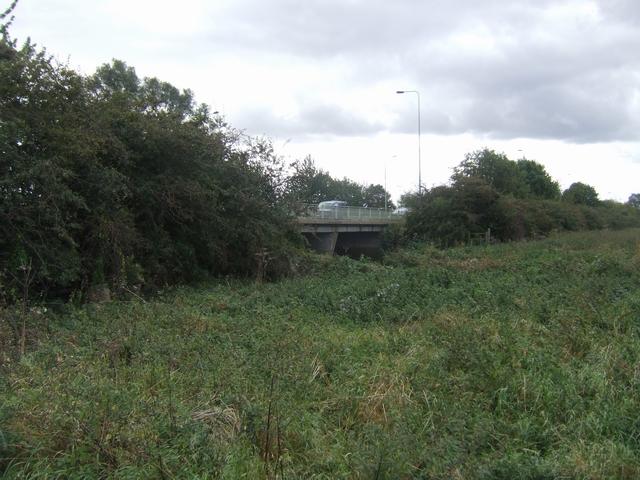 River Trent - Wychnor Bridge