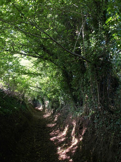 Bridleway, Horsecombe