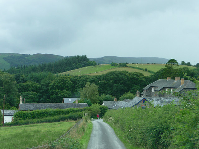 Track from Gigrin Farm