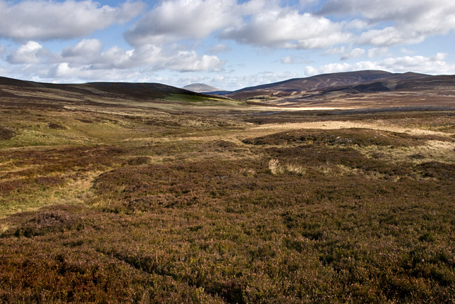 On the slopes of An Creagan above Coulachan Burn - 2