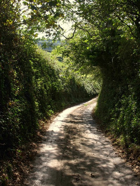 Lane to Maryknowle Farm